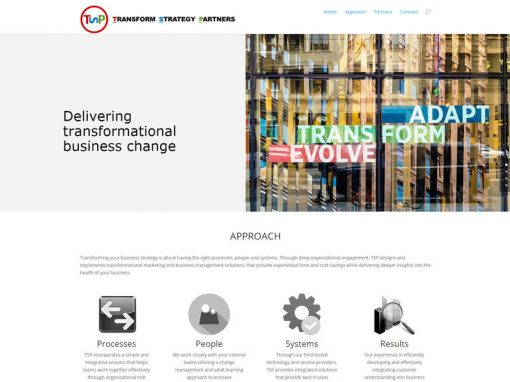 Transform Strategy Partners
